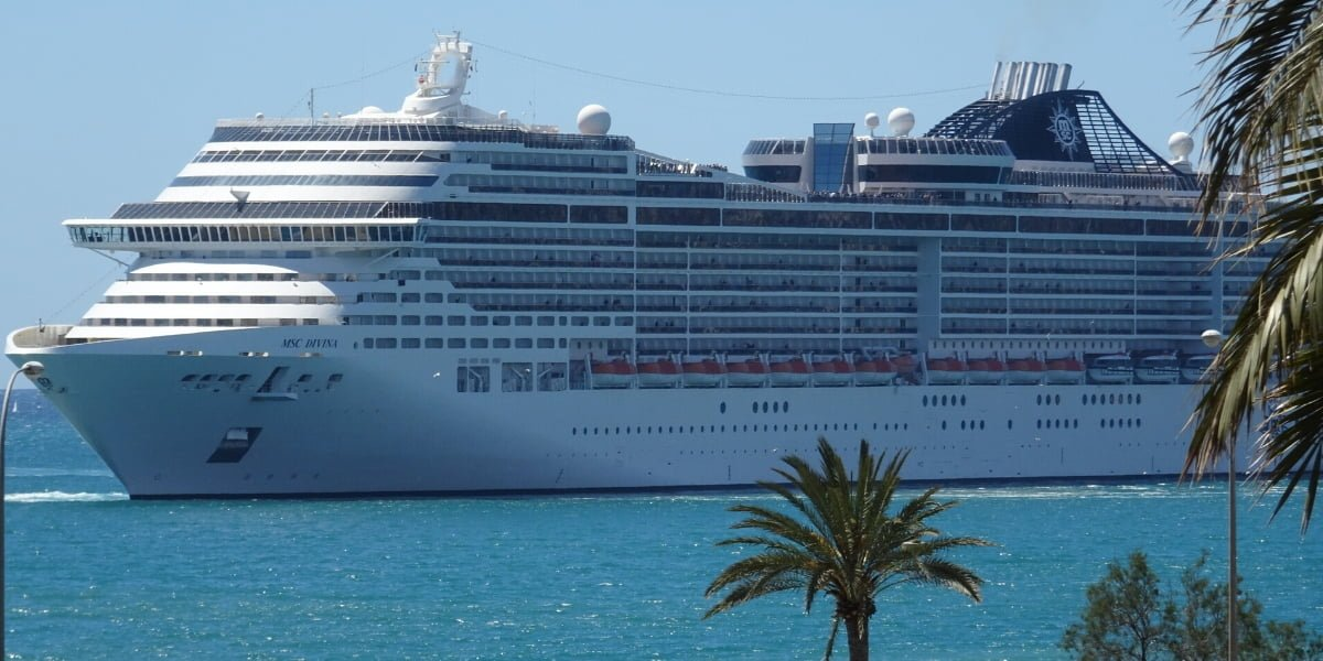 Cruise ship in harbor with palm trees