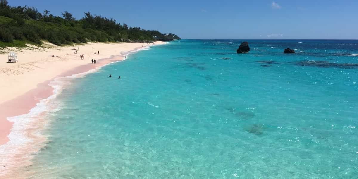 view of the ocean and beach in Bermuda