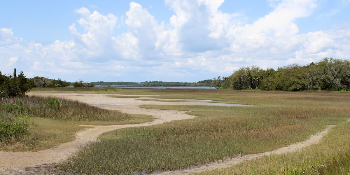 View of Pinckney Island Salt Marsh