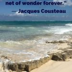 """""""The sea, once it casts its spell, holds one in its net of wonder forever."""" - Jacques Cousteau"""