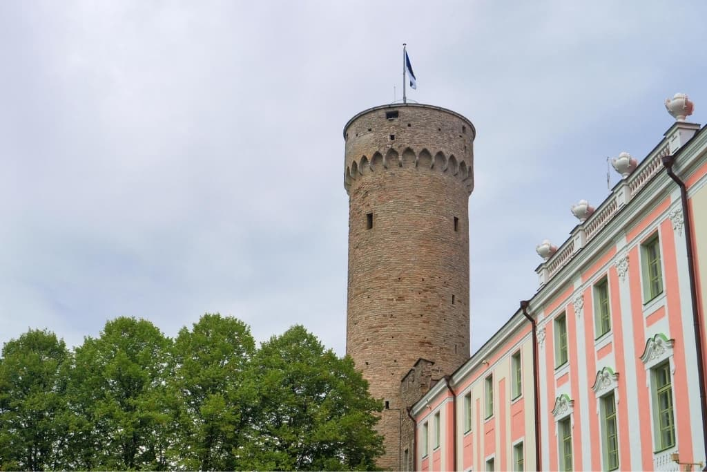 Things to Do in Tallinn Old Town in One Day: Pikk Hermann