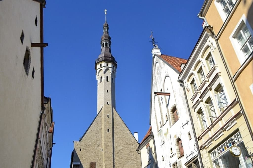 Things to Do in Tallinn Old Town in One Day: Tallinn Town Hall Museum