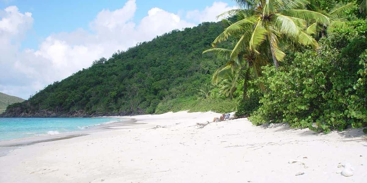 a beach on a tropical private island