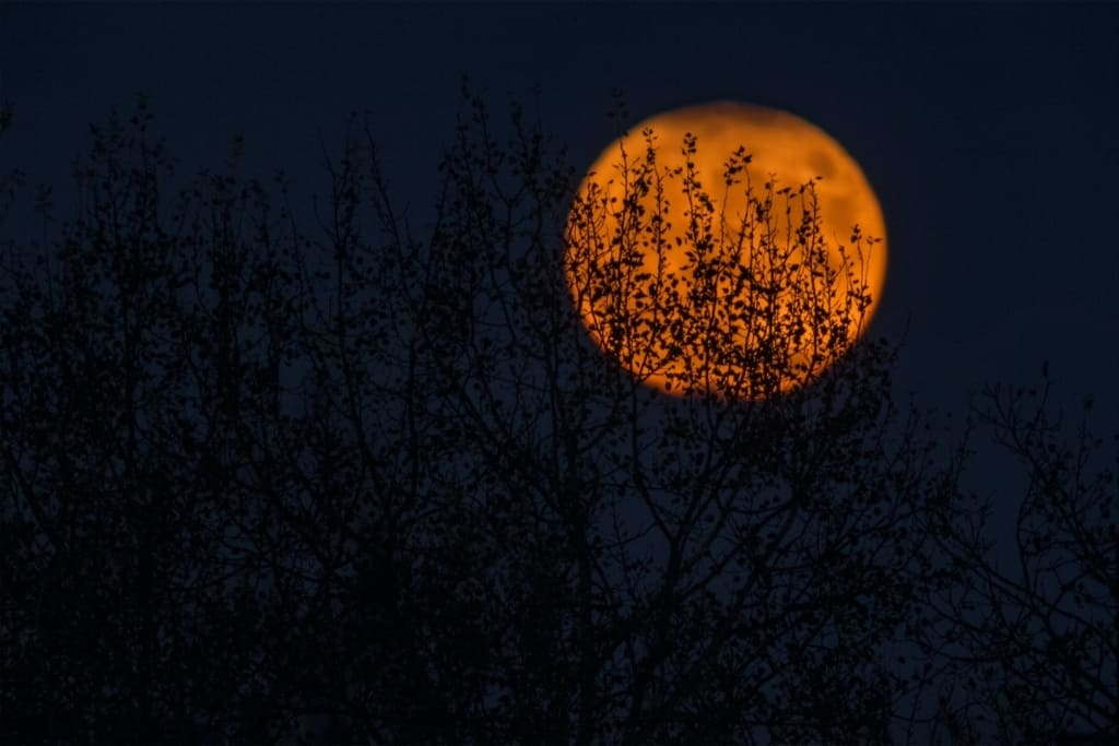 a spooky moon at a ghost tour in Salem Massachusetts