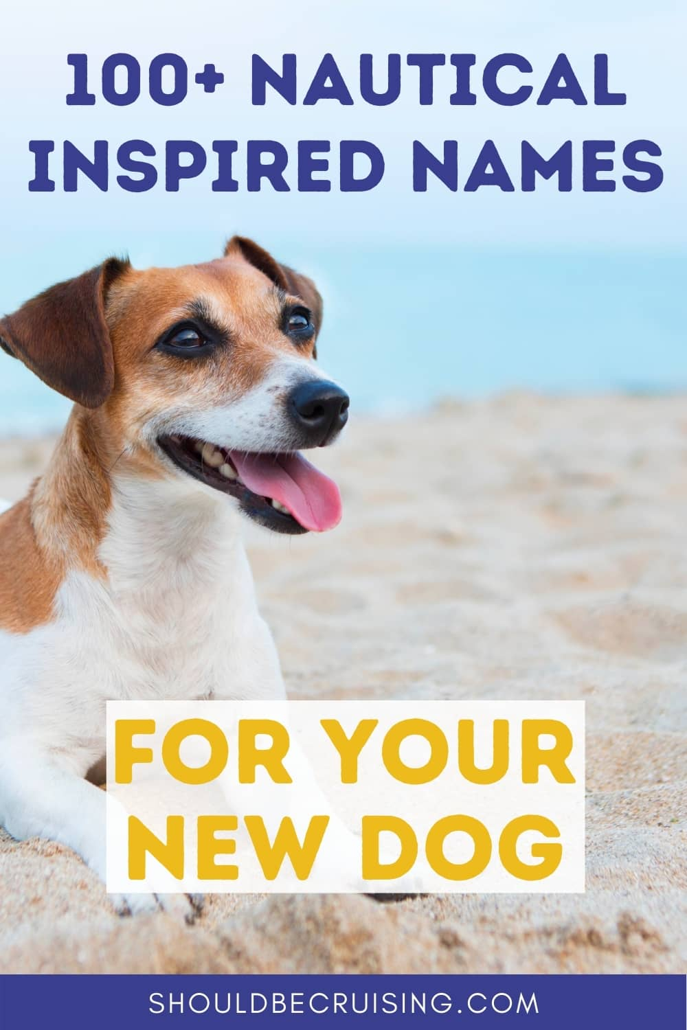 100+ Nautical Names for Dogs With Meanings